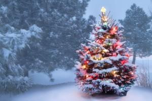 Gledelig jul !