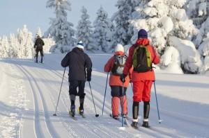 Er nordmenn mindre aktive enn andre skandinaver?