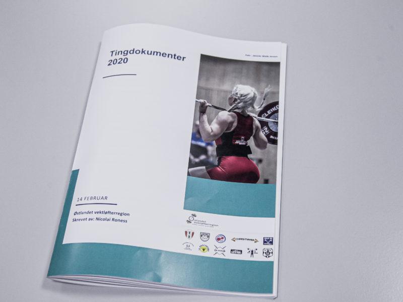 Tingdokumenter – årsmøte 2020